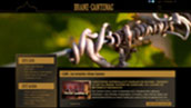 Site internet Brane Cantenac